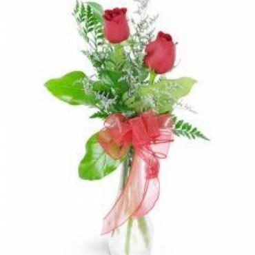 Rosas Decoradas Paz