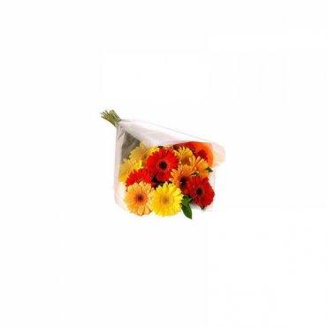 Ramo  de gerberas - Arco iris